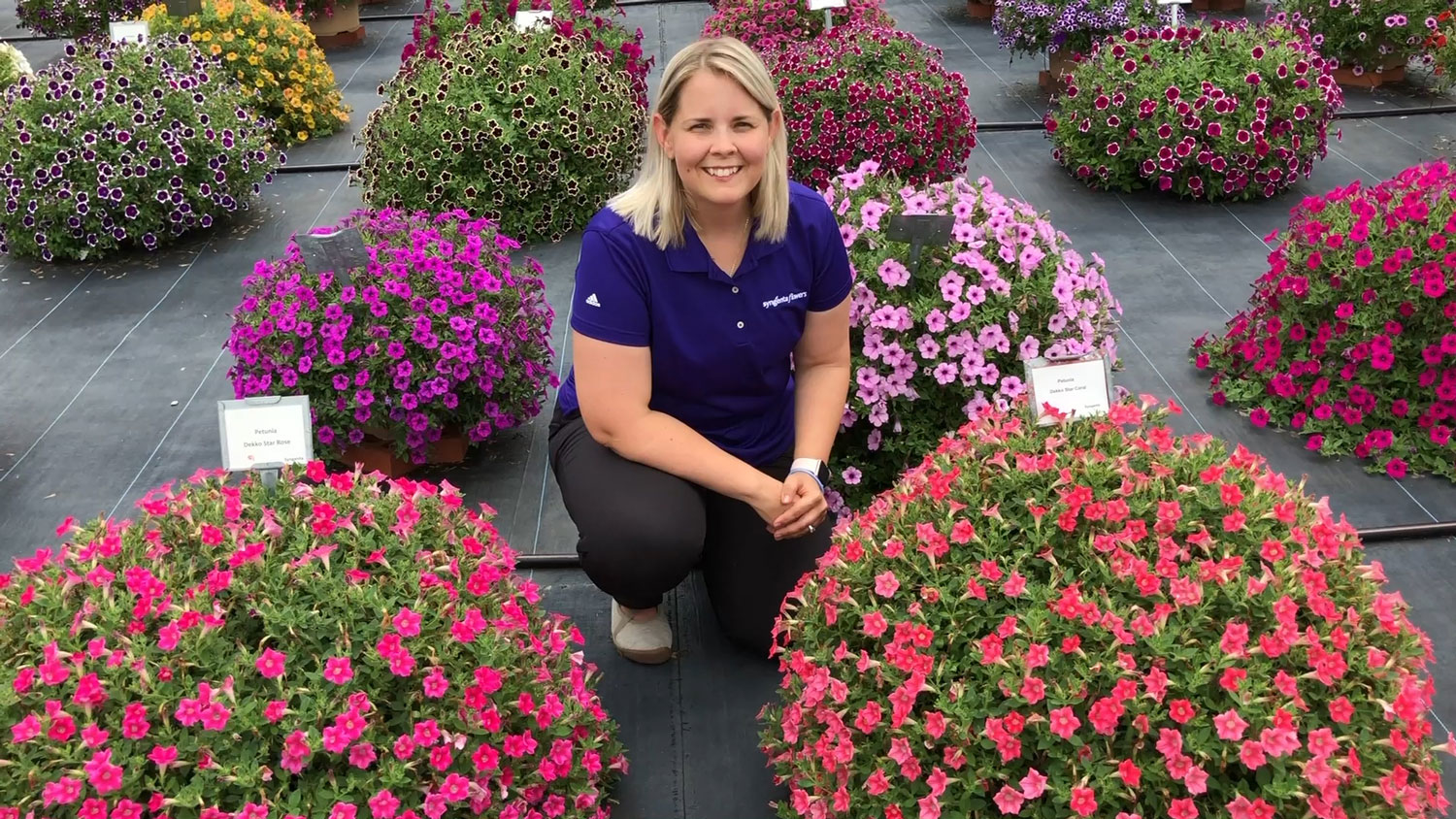 A blonde woman kneeling down next to large pots of bedding flowers.