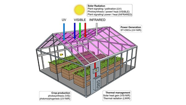 solar cell greenhouse