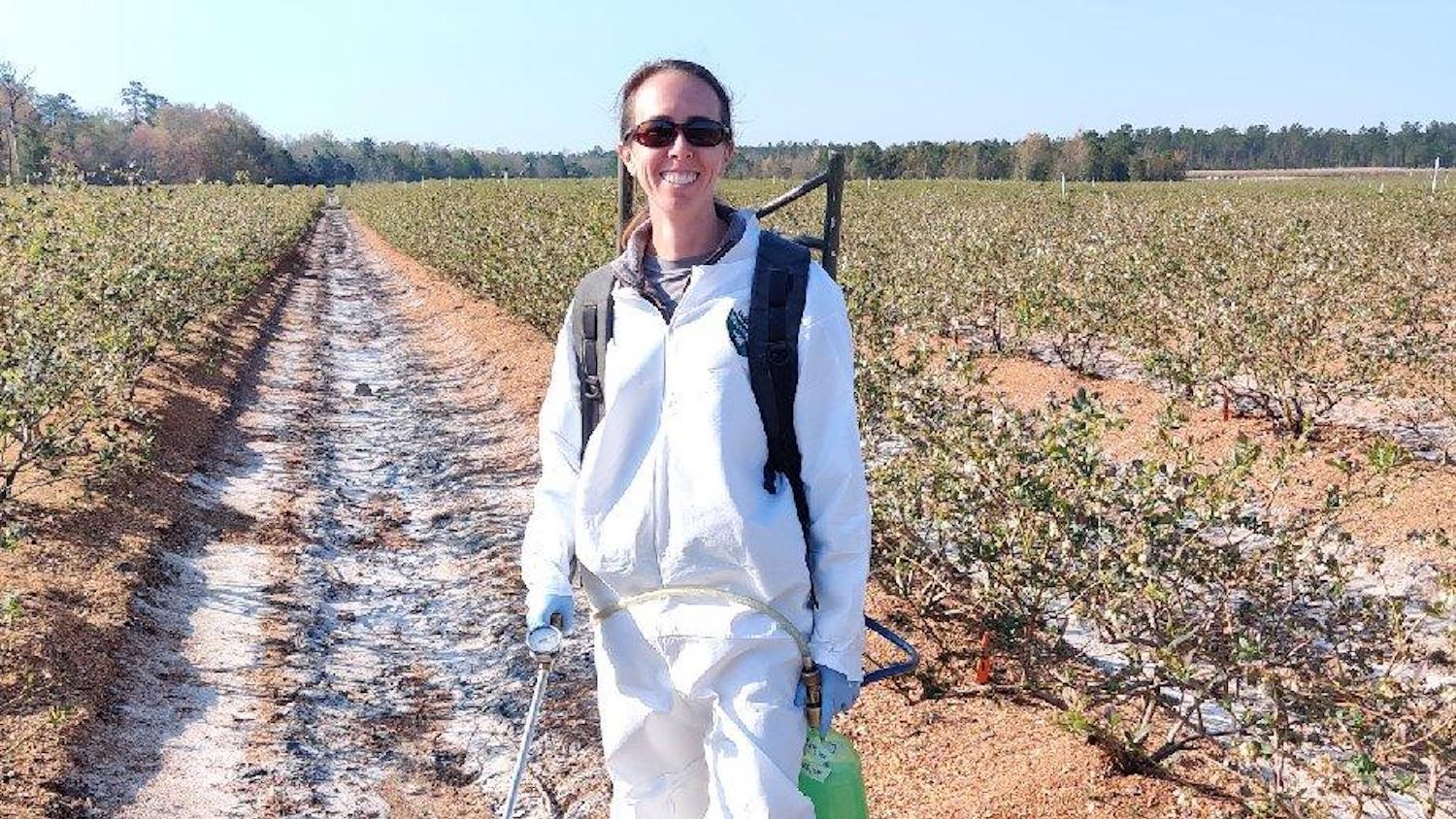 Kira Sims treating a strawberry field with herbicides