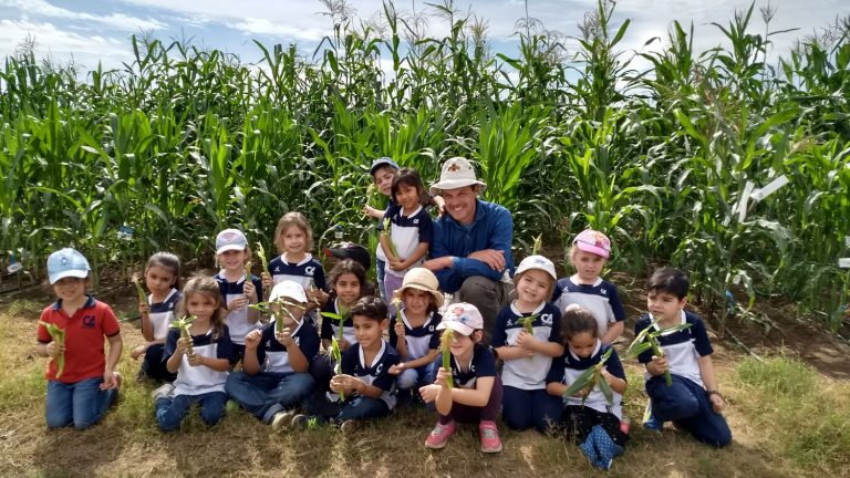 Rubén Rellán Álvarez with kindergarten students from the Mexican-American school of Puerto Vallarta during the Winter Nursey of 2019 in Puerto Vallarta México. Students are holding ears of maize x teosinte F1s