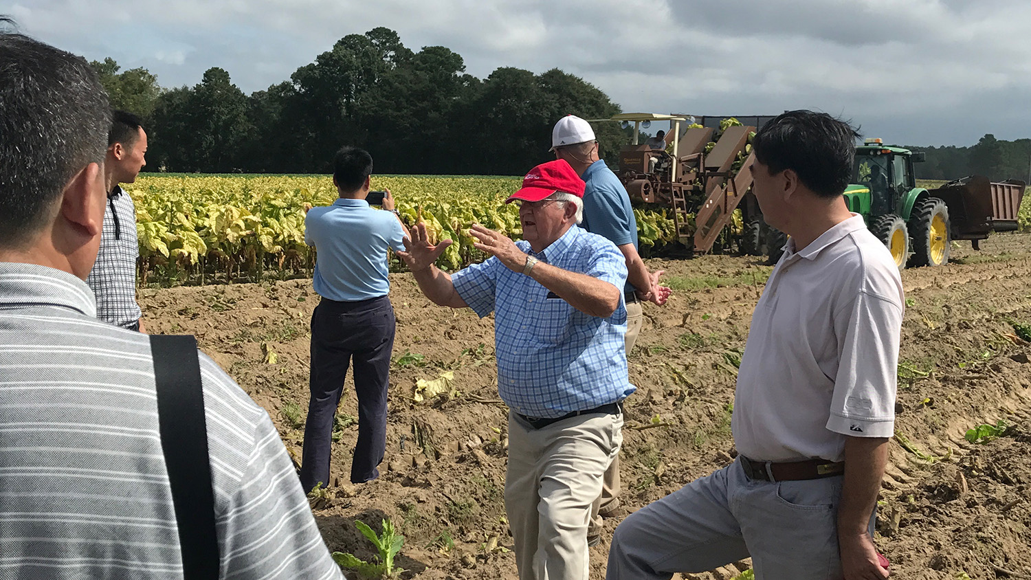 Group of people in a tobacco field that's being harvested
