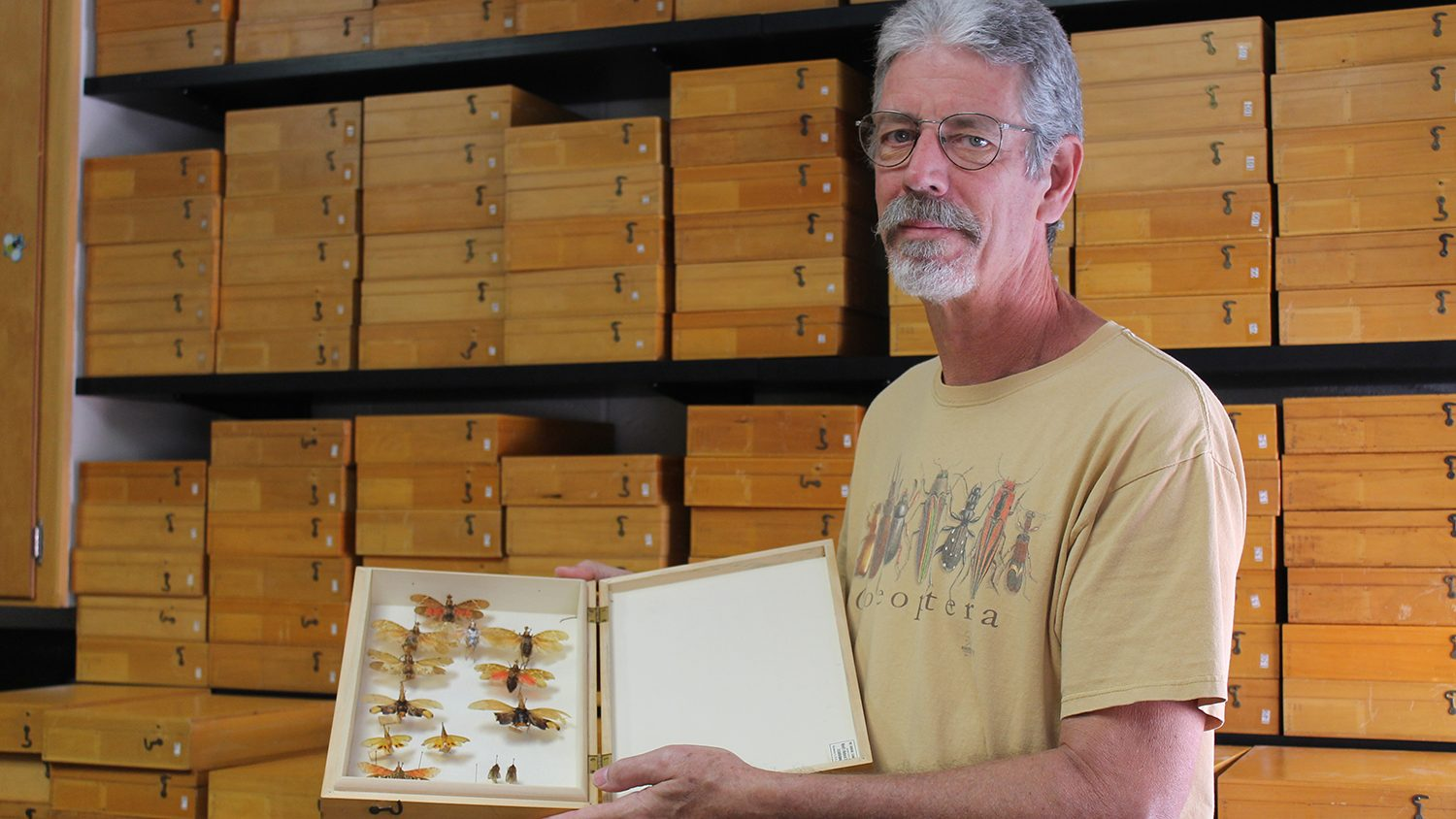 Man holding an open case of pinned insects.