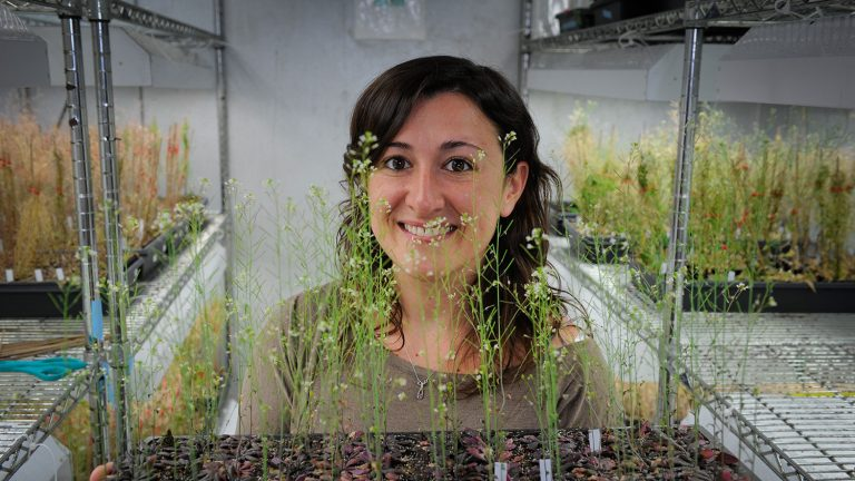 Female faculty member and her research in the form of plants