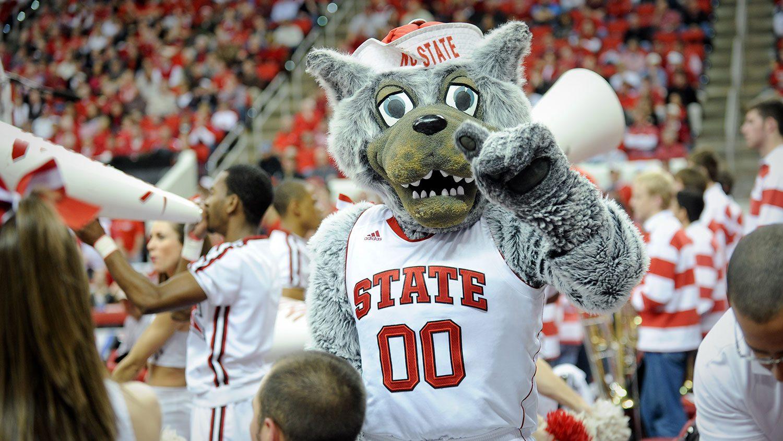NC State mascot Mr. Wuf