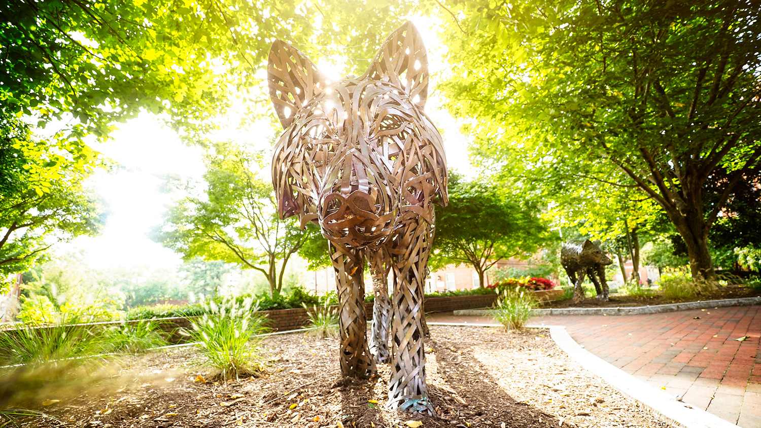 Sunlight shining from behind wolf sculpture