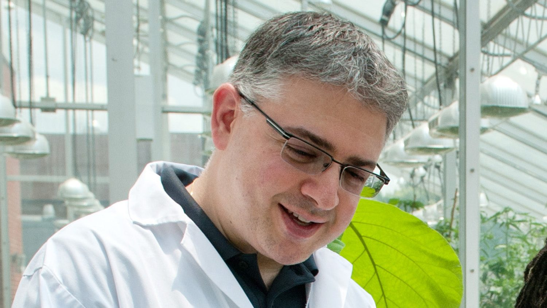 close up researcher in a lab.