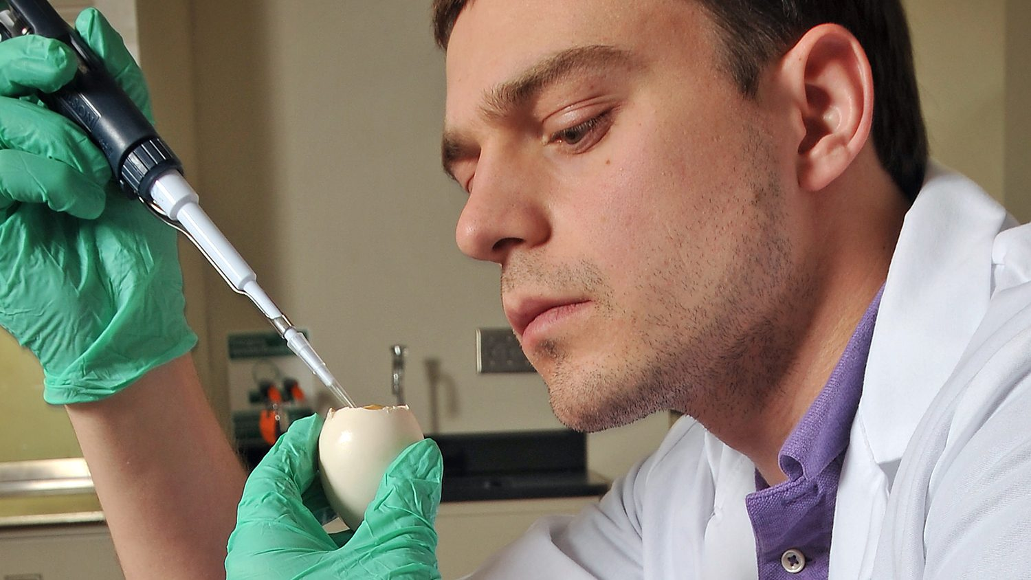 Poultry researcher examines an egg yolk at NC State's Prestage Dept of Poultry Sciences's labs.