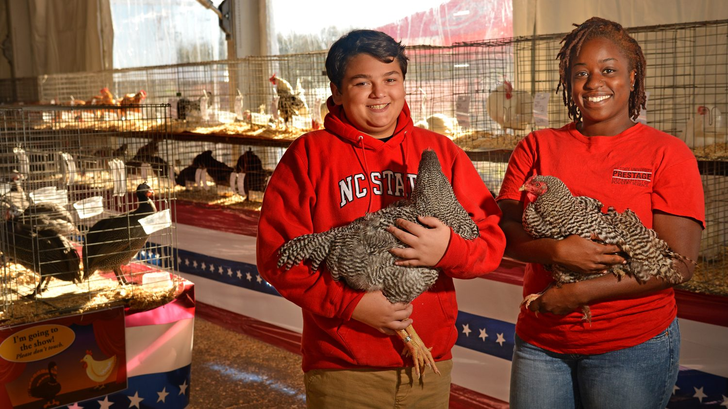 4-H high school student and a Prestage Department of Poultry Science student with chickens at the North Carolina State Fair.
