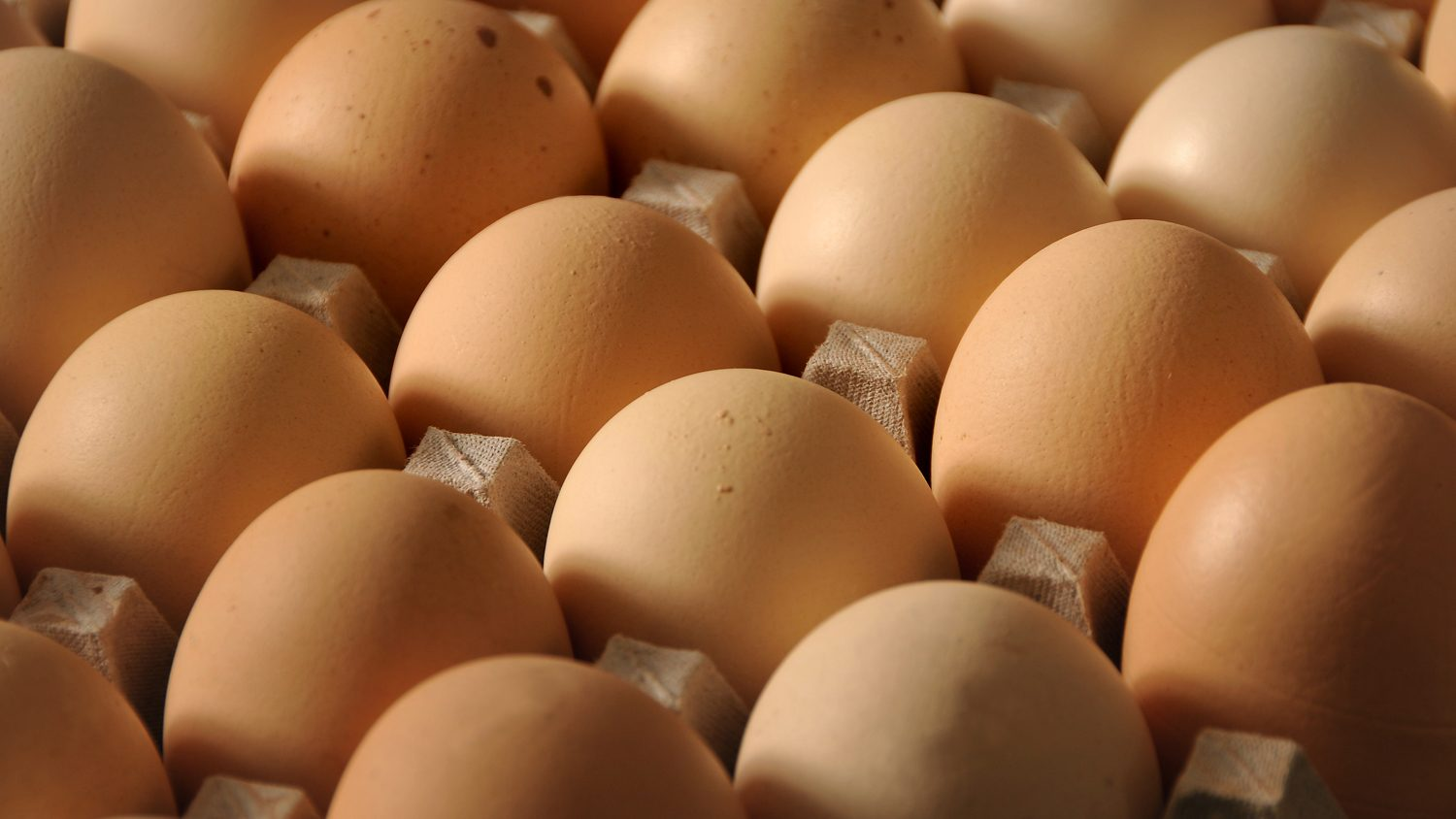 Close-up photo of brown eggs in carton.