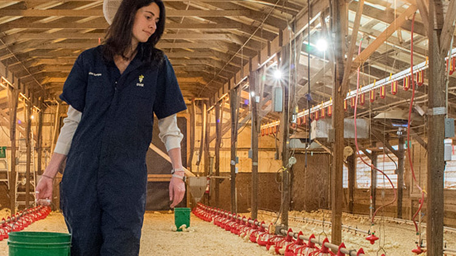 Student at NC State's Poultry Teaching Unit.