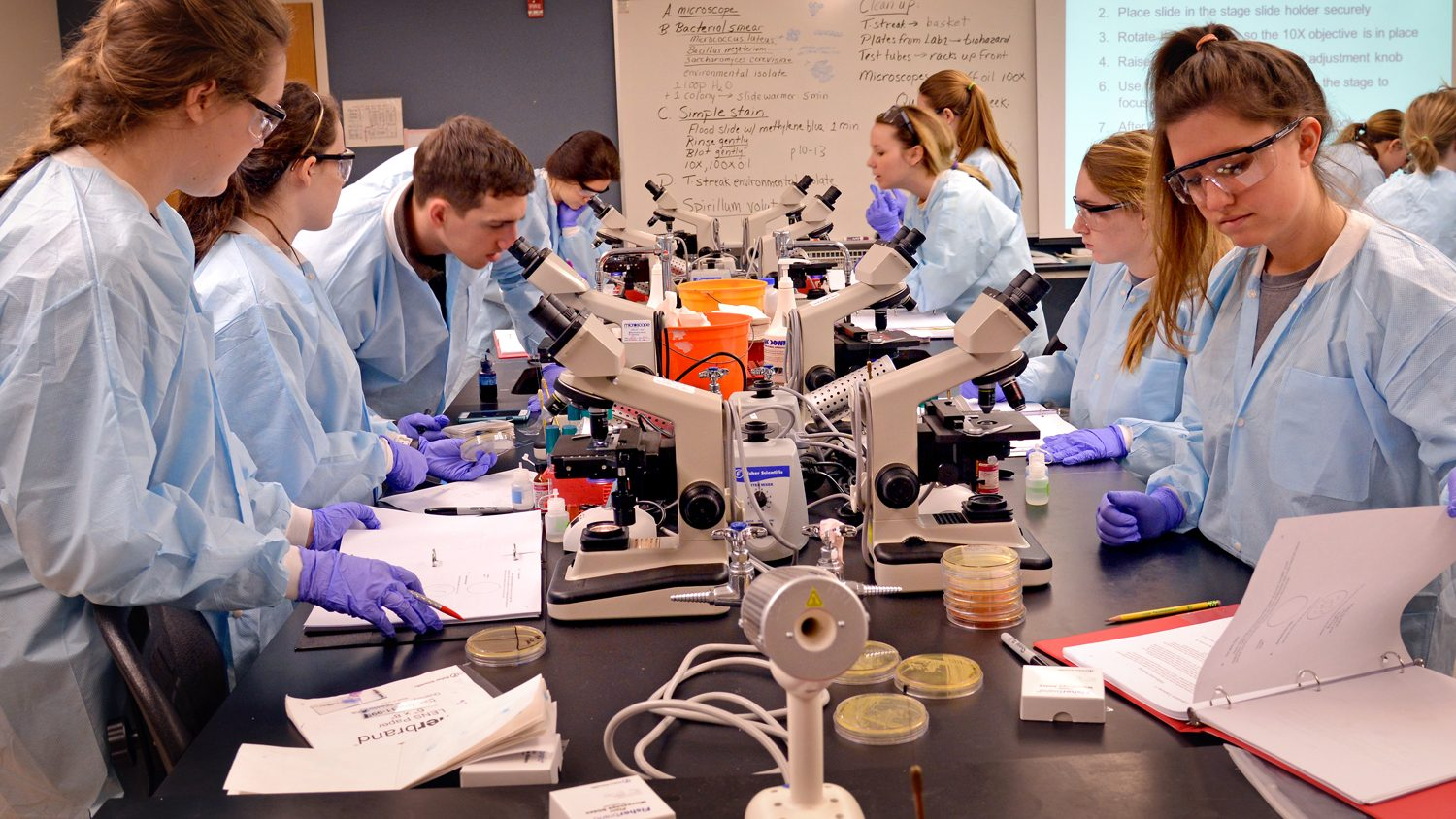 Students in a laboratory.