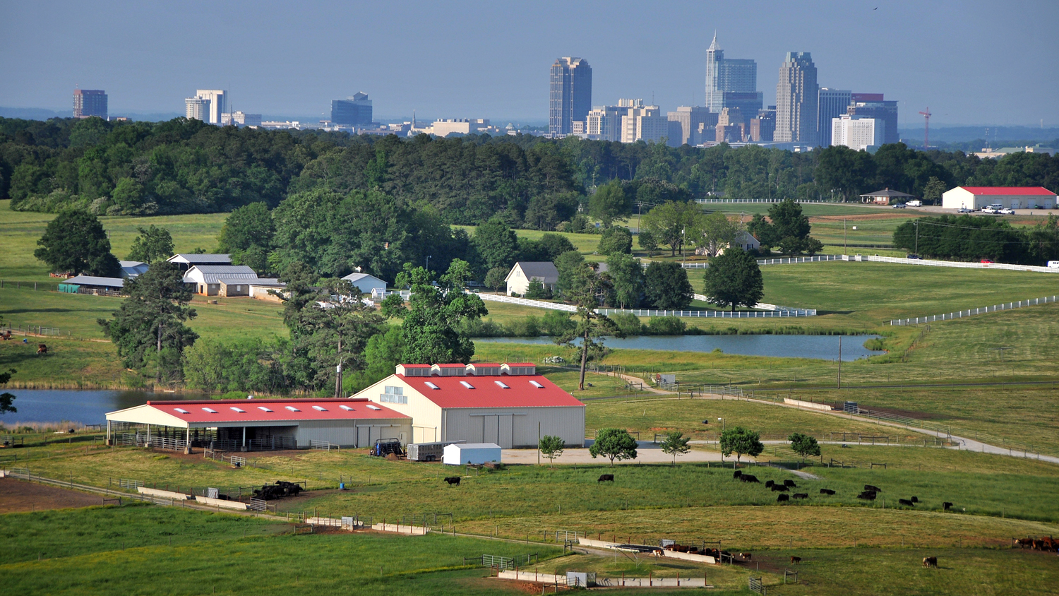 Lake Wheeler farms with Raleigh skyline in the distance