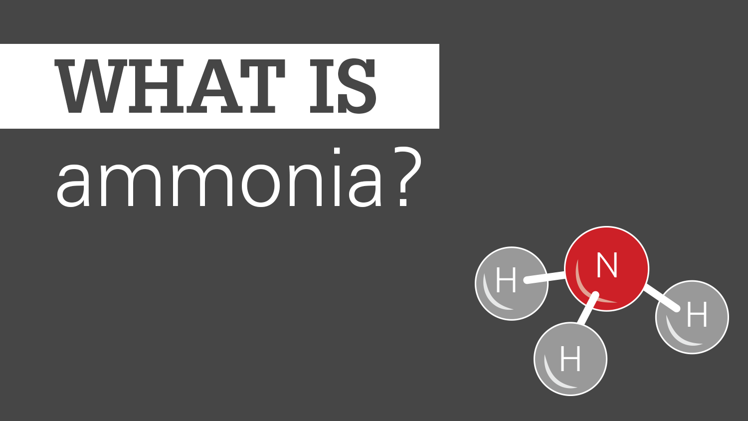 Gray background with ammonia chemical and text What is Ammonia?