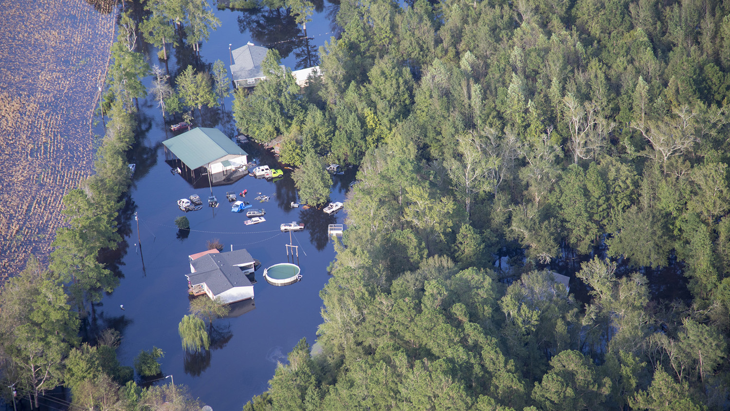 aerial view of flooded homes and forest