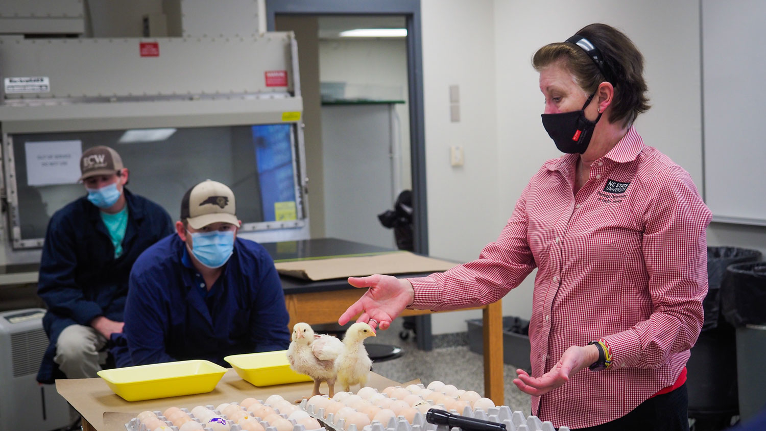 Lynn Worley-Davis teaching students in one of her embryology labs