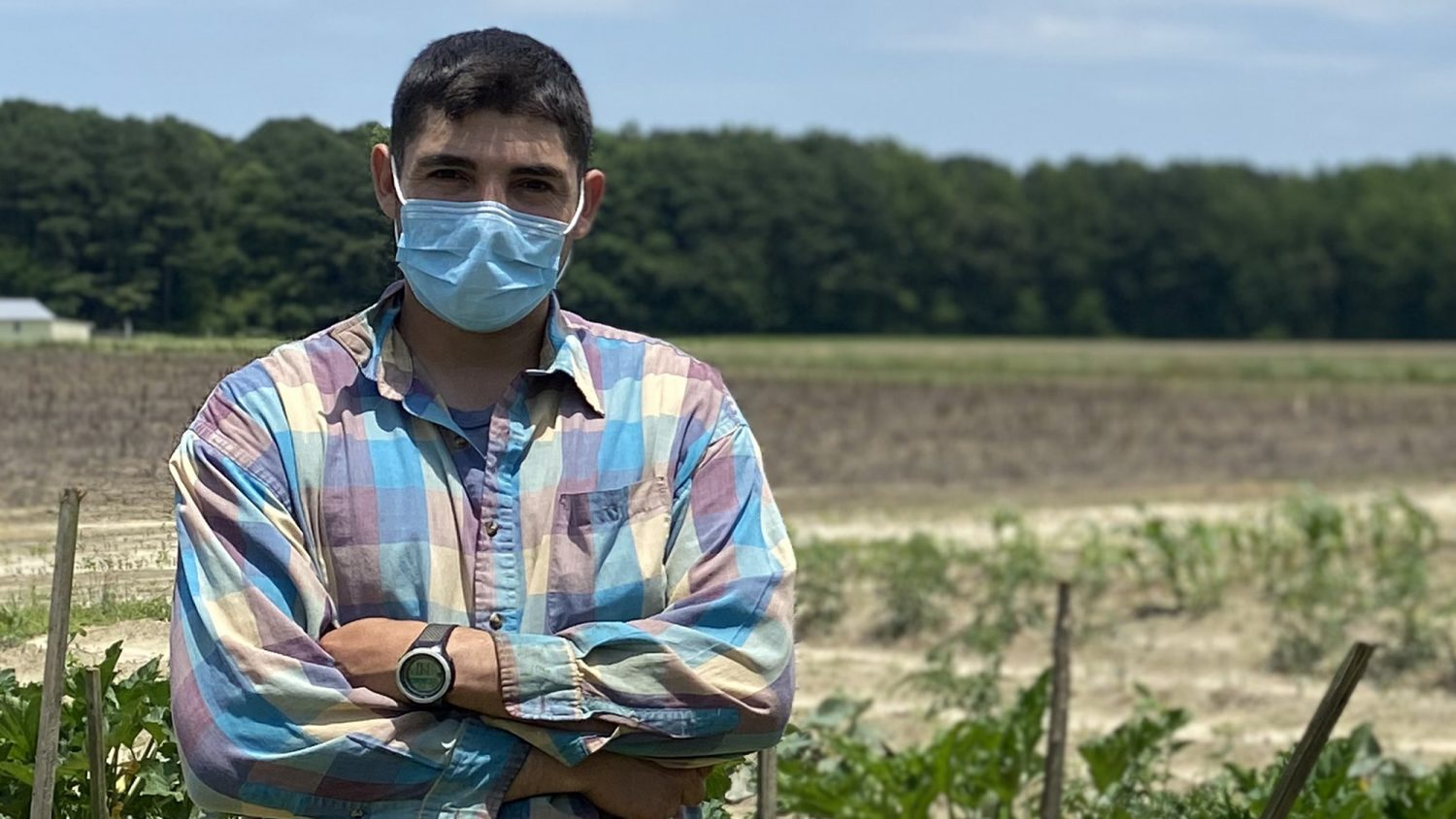 A Hispanic farmworker stands in a farm field with arms crossed while wearing a face covering during an NC State Extension Farmworker Health and Safety Education Program training in Edgecombe County, North Carolina.