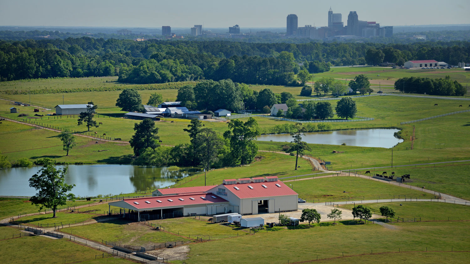 aerial view of farm with the Raleigh skyline in the background