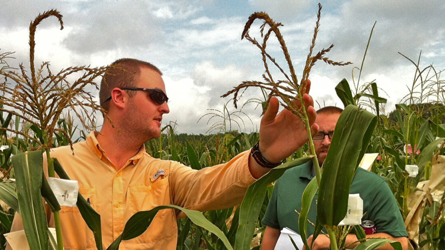 Zachary Jones in corn field talking with another man.