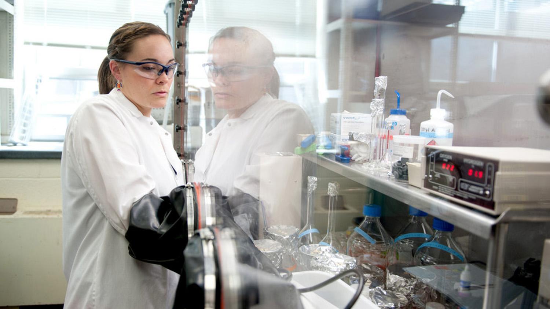 Liz Gillispie working in a lab.