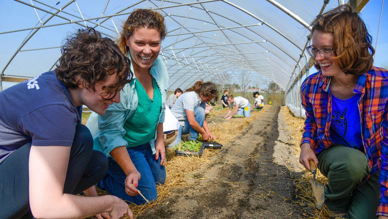 Student farmers in field