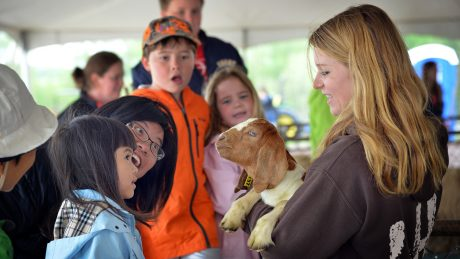 Female student teaches children about baby goats.