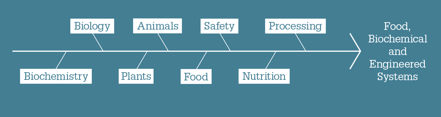 Food, biochemical and engineered systems diagram