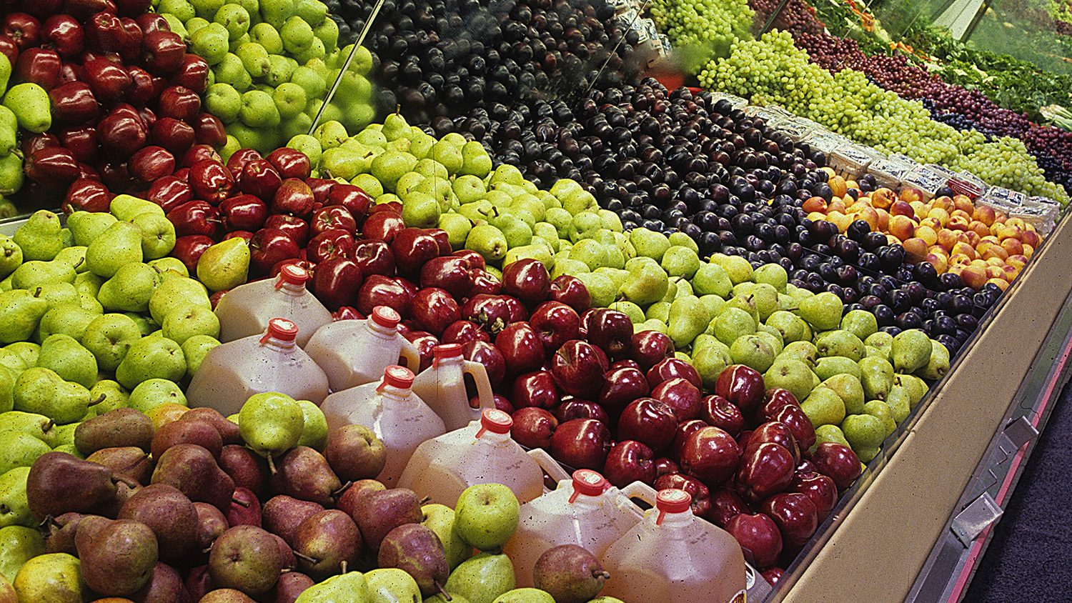 Grocery store produce section with appleas, cider, plums and more.