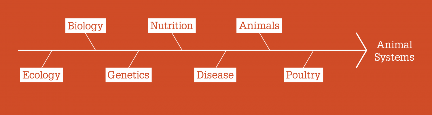 Animal systems diagram