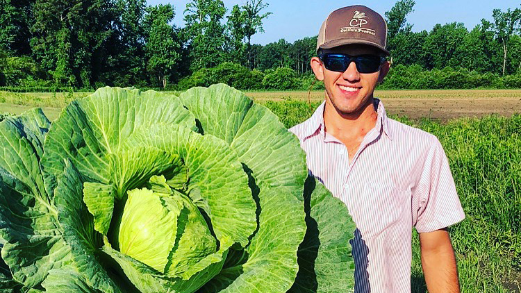 Man wearing sunglasses and hat holds a large cabbage plant.