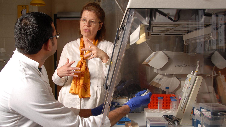 Professor and graduate researcher discuss research in lab