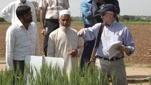 Dr. David Marshall points to a wheat field as he talks to six scientists in Pakistan.