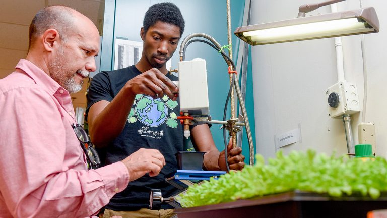 Professor and student use a gene gun with plants.