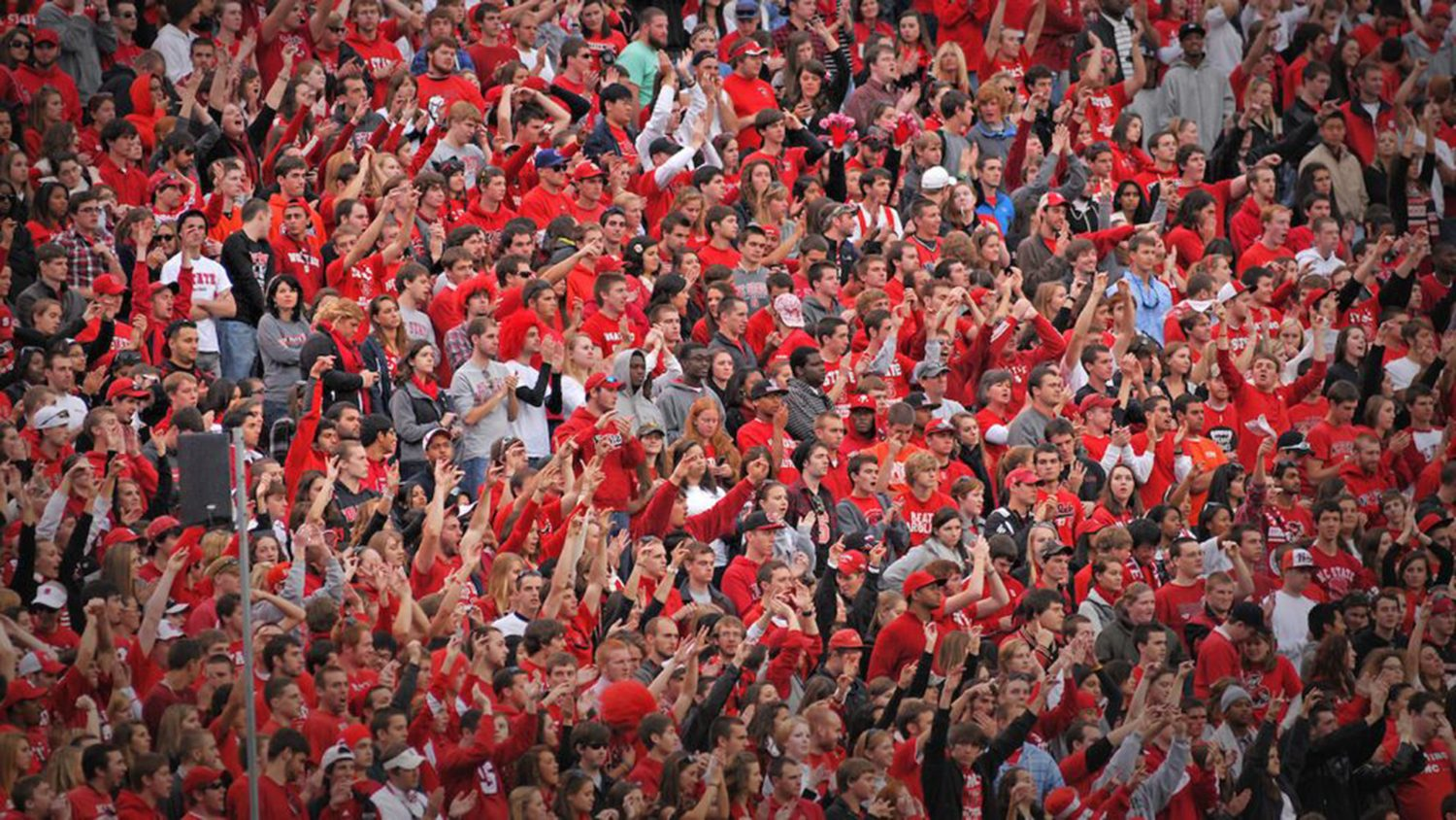 Cheering crowd at an NC State football game.