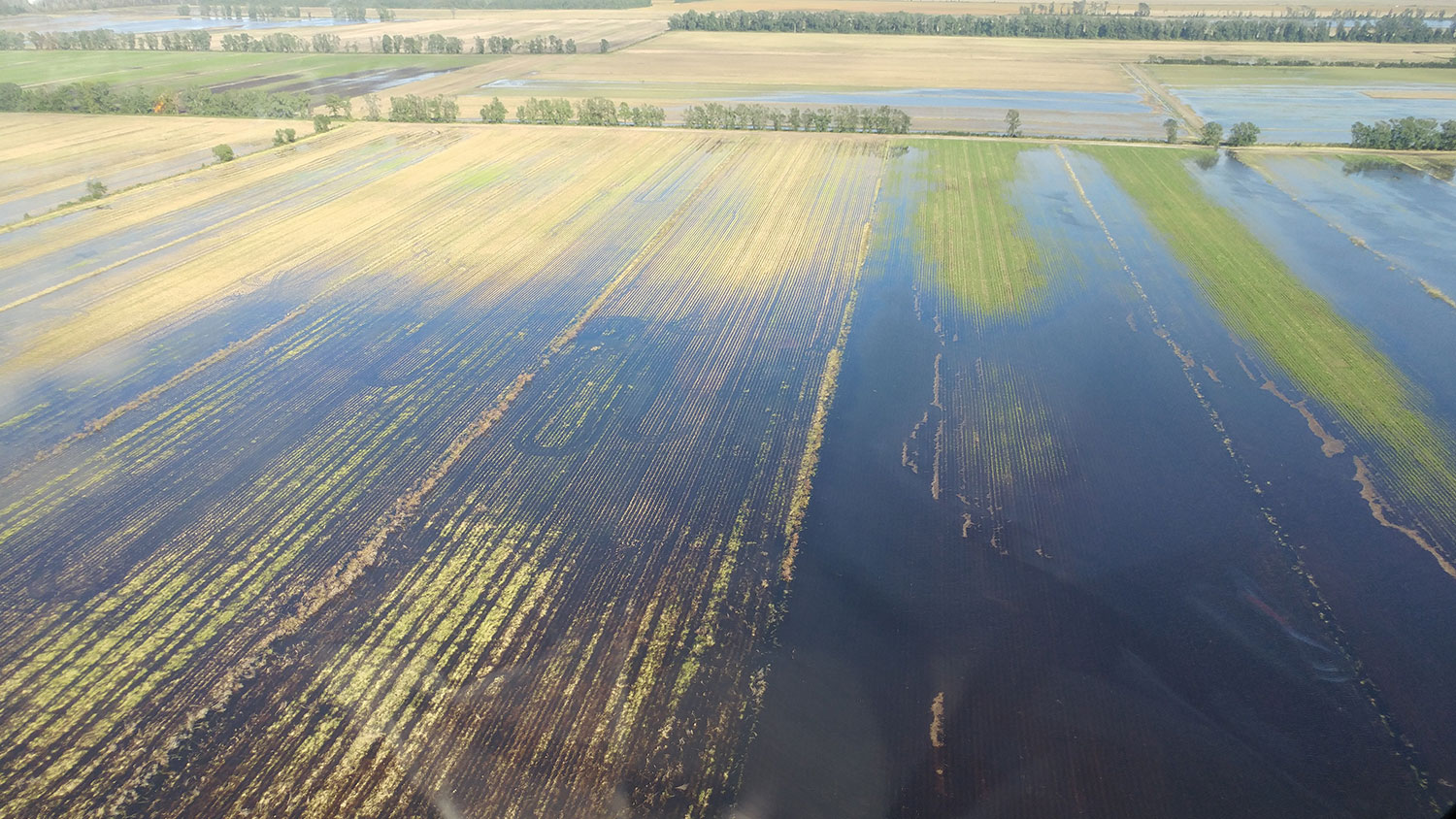 Flooded agricultural fields after Hurricane Matthew
