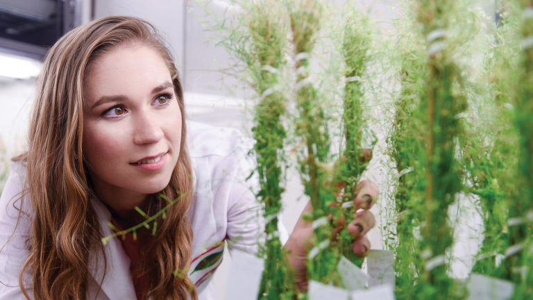 CALS student Brooklynn Newberry, a plant pathology major, in lab.