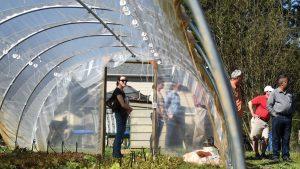 Greenhouse at NC Farm School