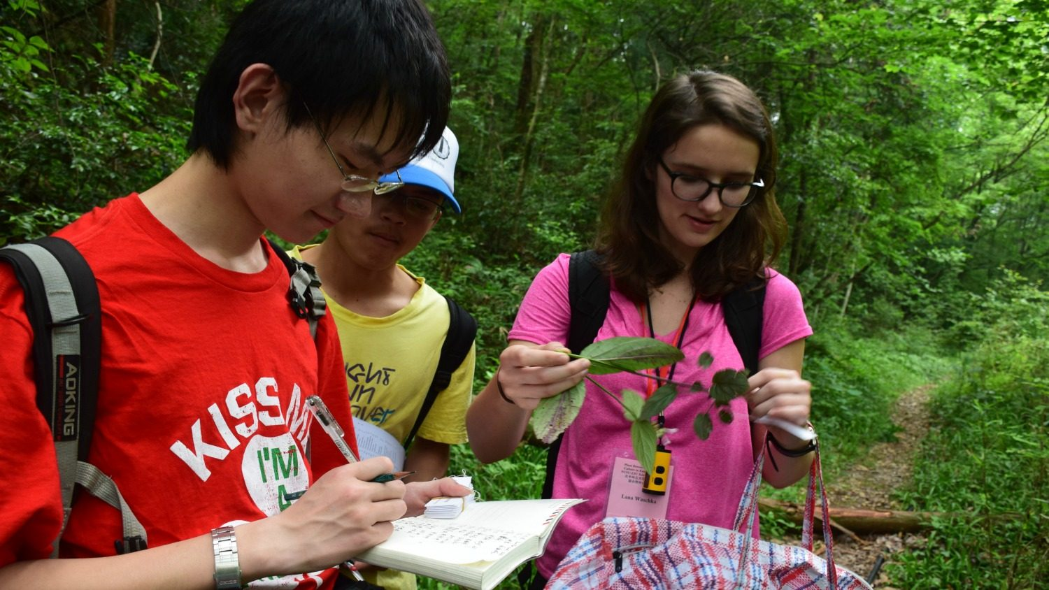 Study abroad students sampling plants in China