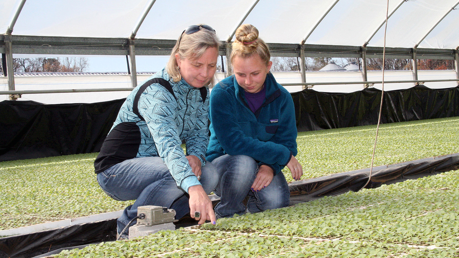 Lee County Extension profiles women in agriculture
