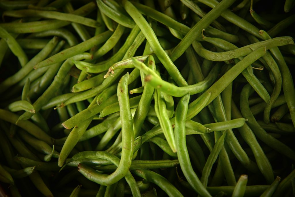 Fresh green beans for sale at the North Carolina State Farmer's Market in the Fall.