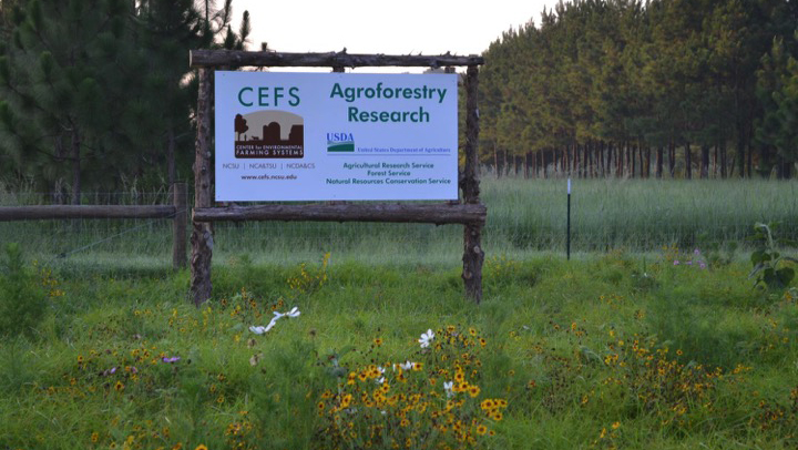 CEFS Agroforestry Research sign