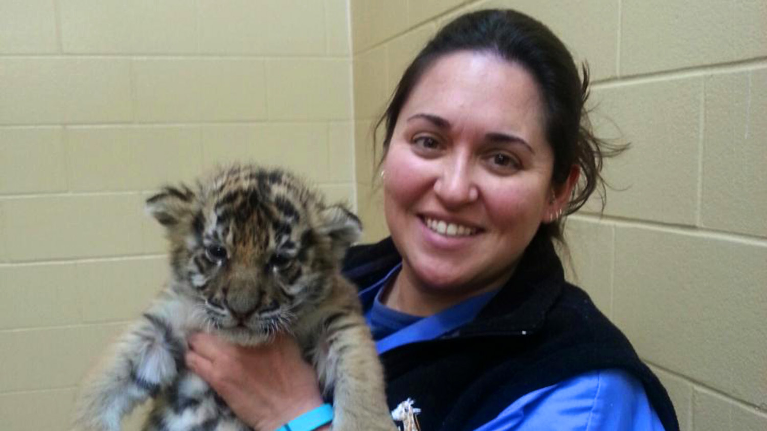Amanda Guthrie holding baby tiger