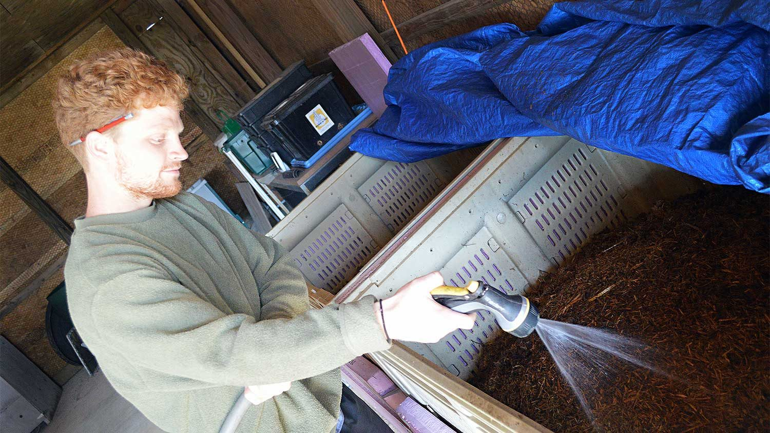 Student Garnett Bullock feeds the approximately 30,000 worms that live at the NC State Composting Learning Lab off Lake Wheeler Road in Raleigh.
