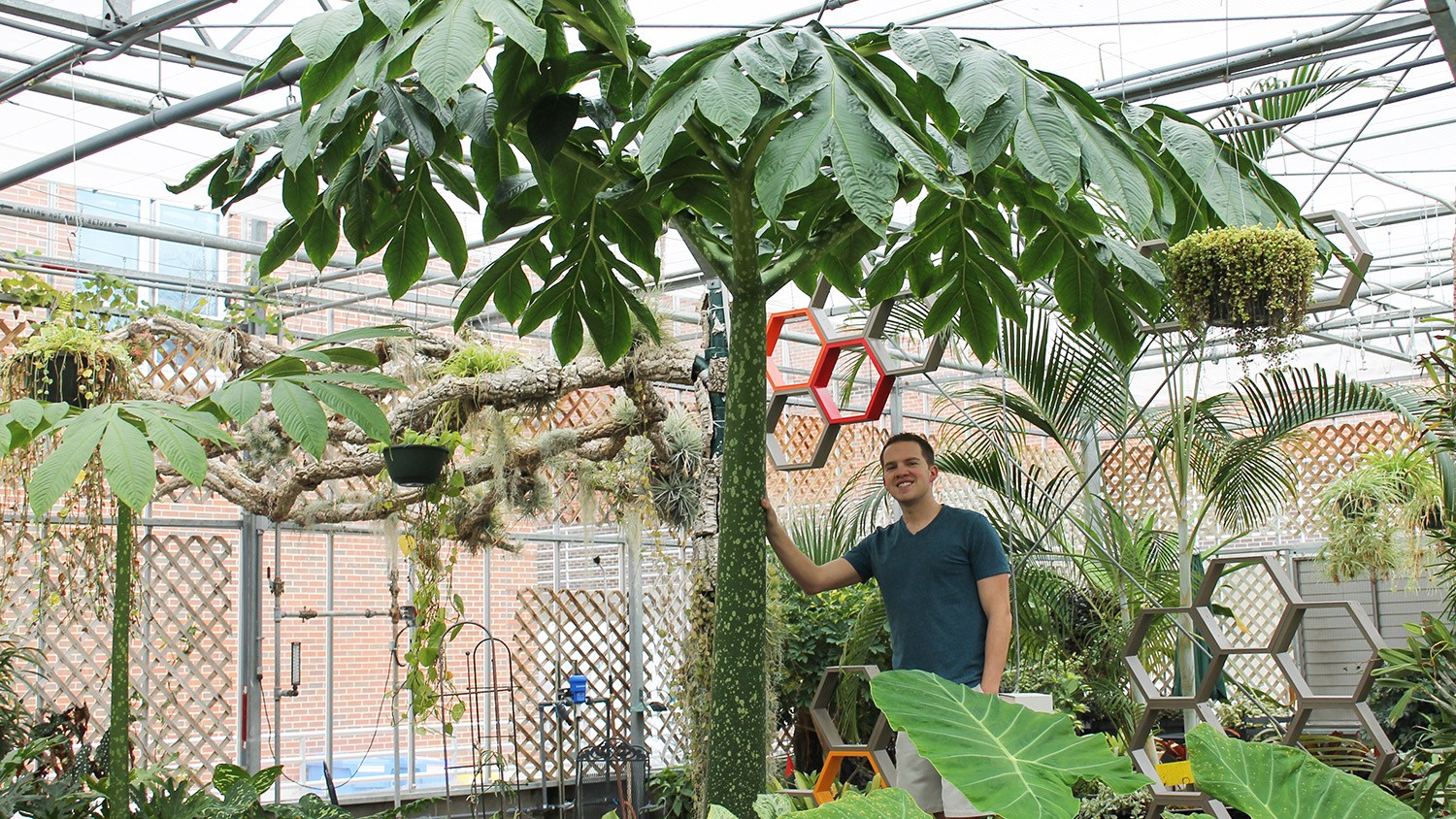Student standing by a large tree-like plant.