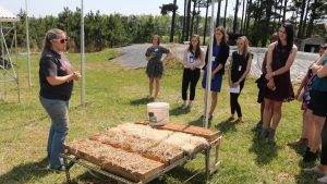 Scientist discusses erosion control outside with Youth Institute participants