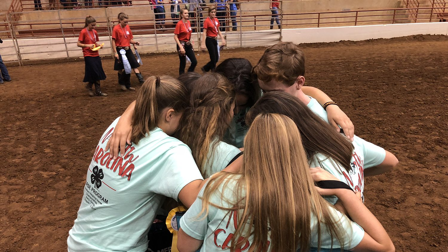 4-H Equine Championships