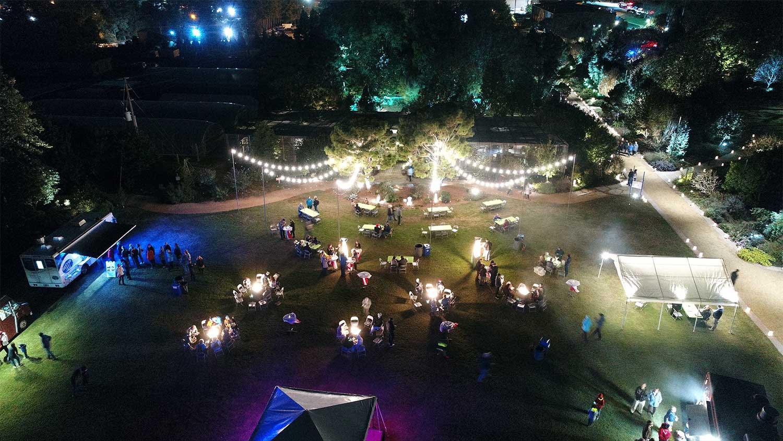 Photo of garden lights at night