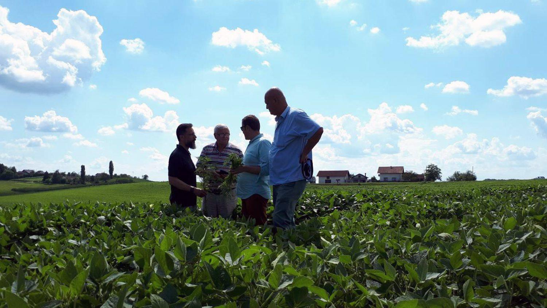 Men out in a field