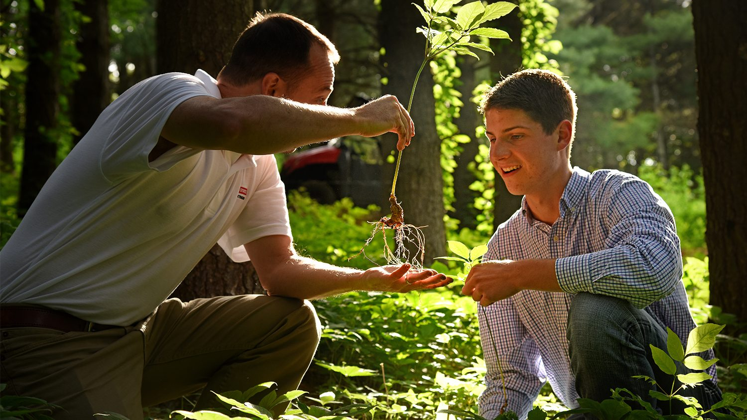 Older man showing a male student roots on a plant