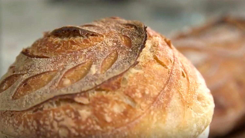 CALS Homegrown Sourdough Bread
