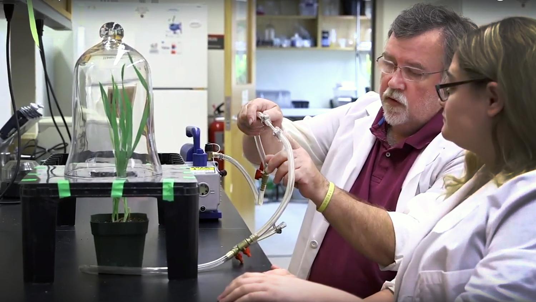 Stewards Plant Science 2